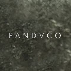 Pandaco 20